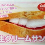 知っとこ!で紹介された「パン工房 カワ」の生クリームサンドをお取り寄せして食べてみた!!