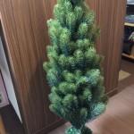 【まだ間に合う!】1年越しで買えました!まるで本物のもみの木! PLASTIFLOR社のクリスマスツリー